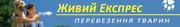 Услуги перевозки животных по Украине и за границу
